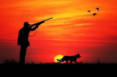 Hidden dangers: Can hunting be hazardous to your health?