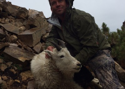 Mountain Goat (2014)