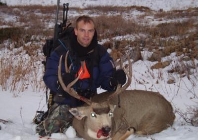 Mule Deer (2007)